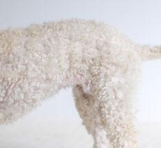 犬用バリカンのおすすめ6選!使い方のコツもご紹介