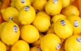 塩レモンのレシピ本おすすめ9選